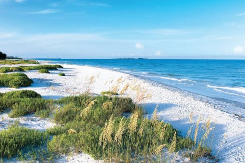 Beach near Tampa Bay, Florida