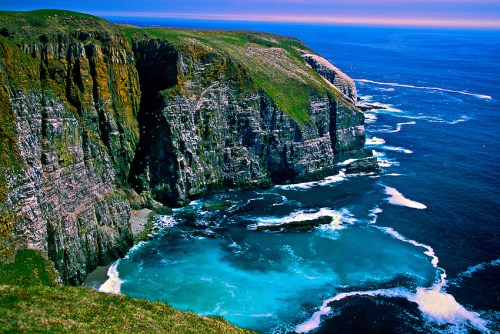 Image result for newfoundland